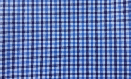 Blue & Blue Checkered